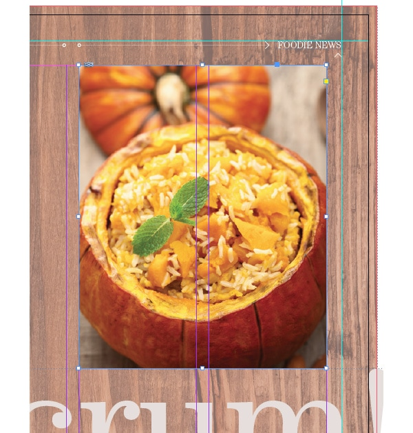 magazine layout design indesign typography