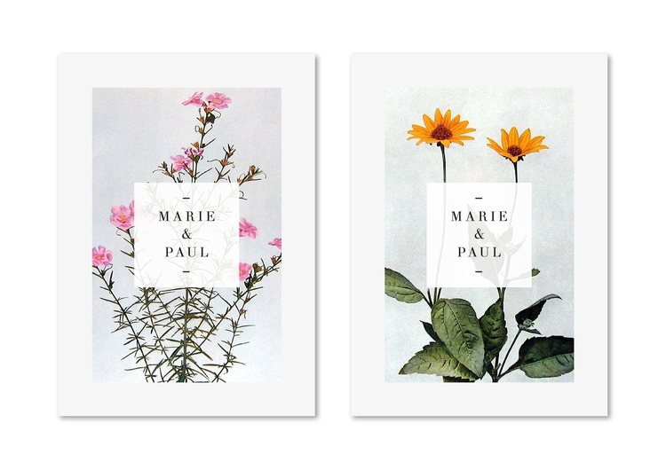 botanical graphic design flowers branding inspiration wedding invites invitations save the date antique vintage