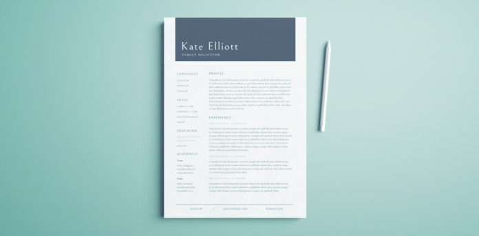 Free Professional Resume Template - Free InDesign Template - Professional Layout