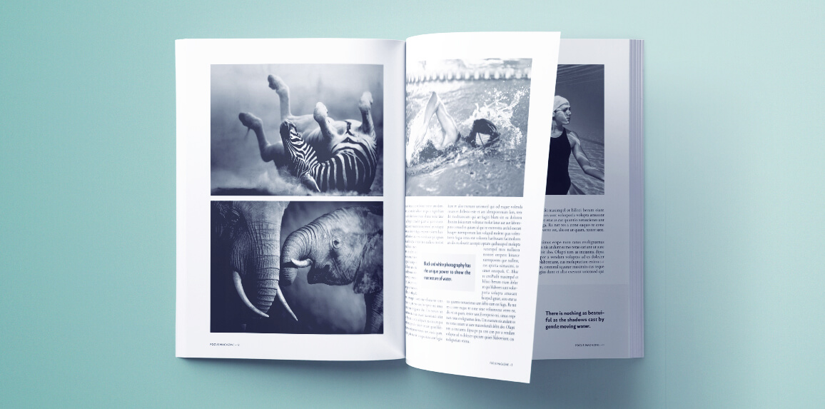 Stunning Photography Magazine Template For Indesign Free Download